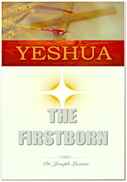 Yeshua the first born