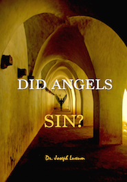 Did Angels Sin?