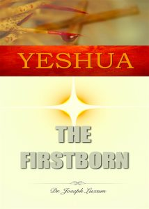 Yeshu The Firstborn